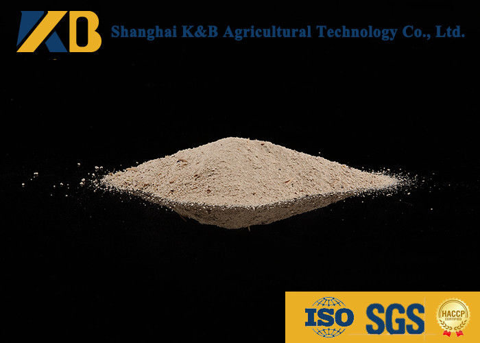 Sprouted Brown Rice Powder / Natural Feed Additives Enhance Poultry Nutrition